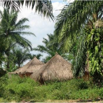 Congolese village